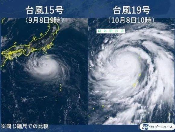 台风对比图.jpeg